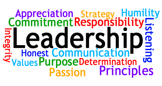 Describe Strong Leadership Skills
