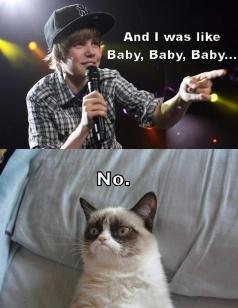 Funny-Cats-Top-49-Most-Funniest-Grumpy-Cat-Quotes-2